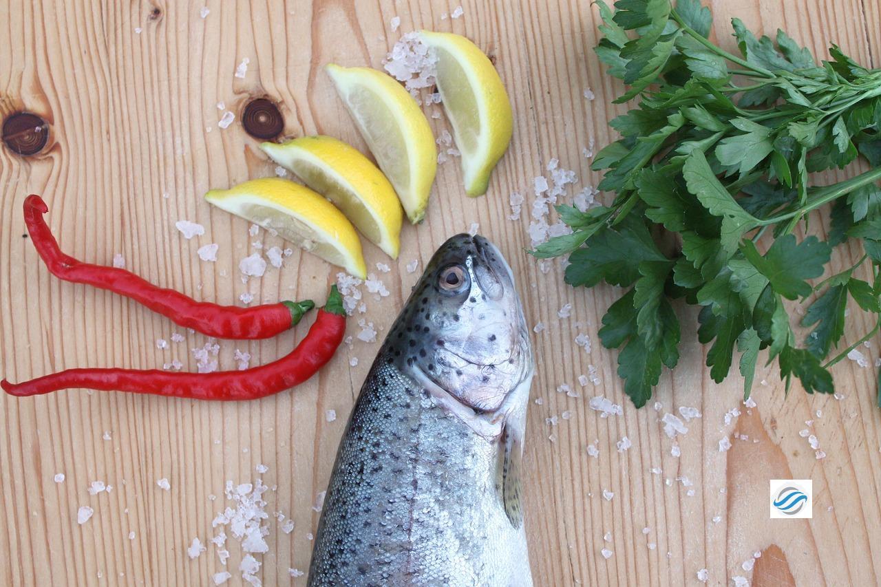 Neptuns Küche – aus der Ostsee … auf den Teller